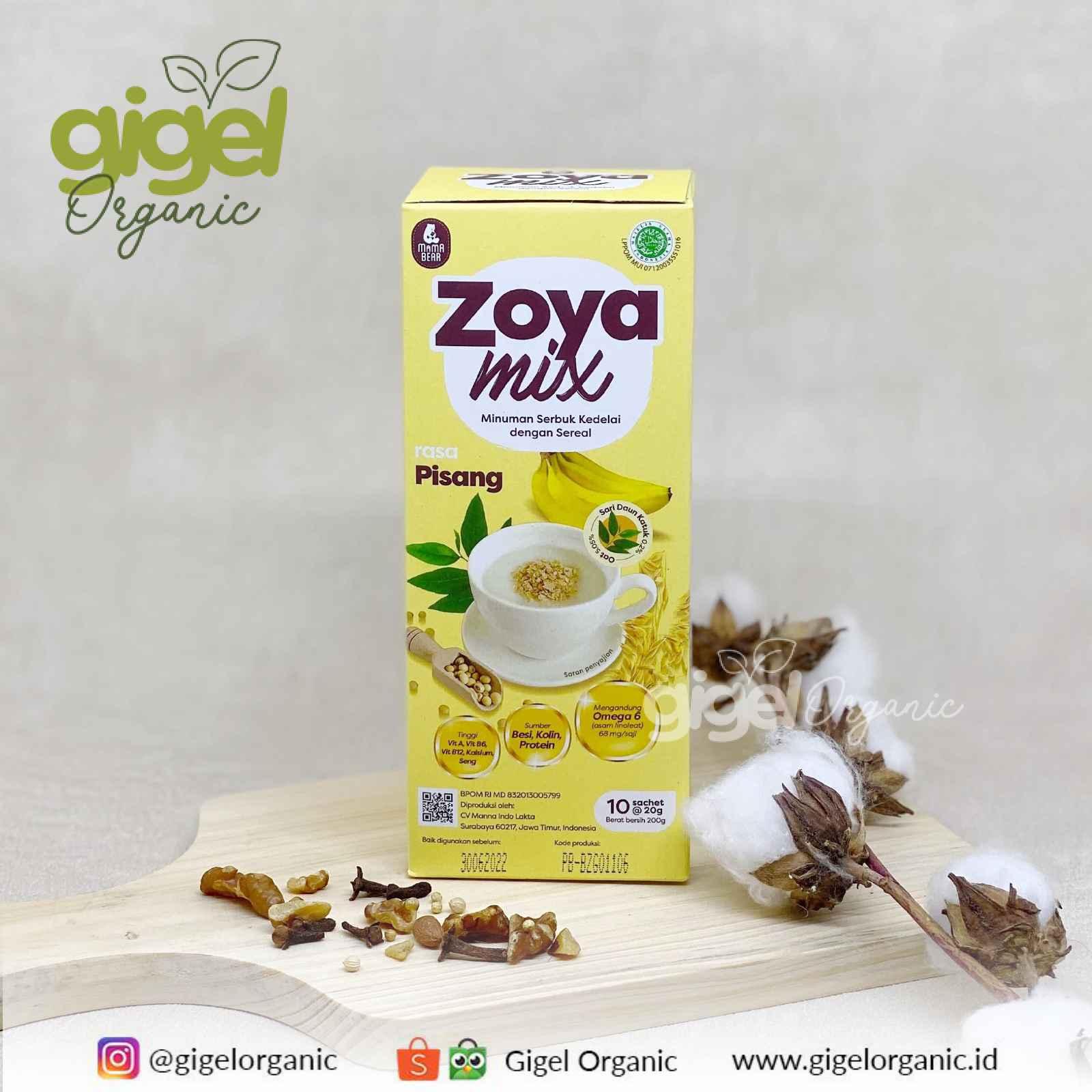 Jual Mamabear ASI Booster Zoyamix Pisang Gigel Organic