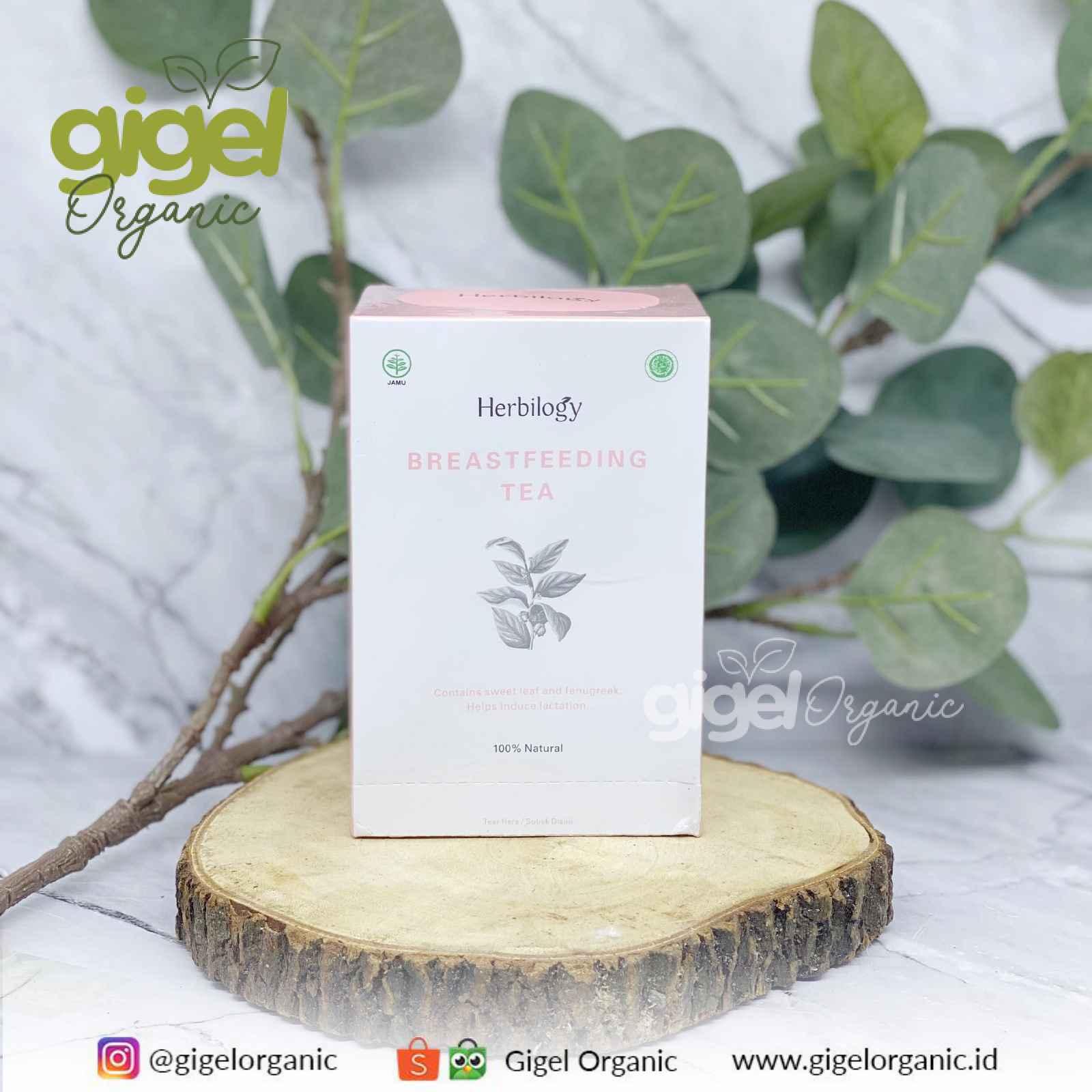 Herbilogy ASI Booster Teh Daun Katuk Gigel Organic