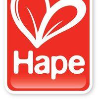 Hape Build A Bug Sorter